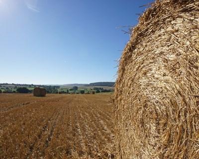 Not Cias E Eventos Sobre Agricultura