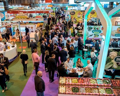 "Fruit Attraction 2017: empresas apostam no ""Smart Agro"""