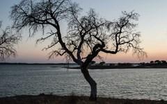 A importância do regadio em Portugal